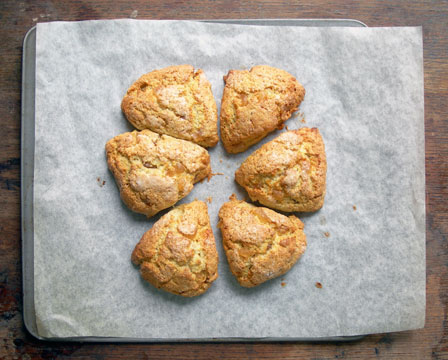 ginger cream scones